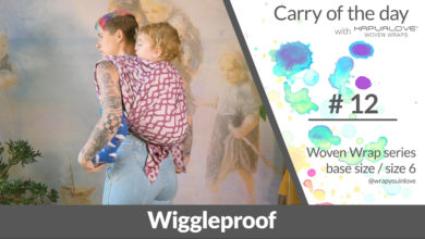 Photo of Wiggleproof backcarry –  Woven wrap – series (size 6 / base size)