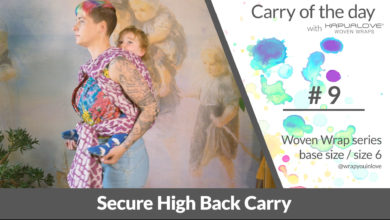Photo of Secure High Back Carry  – Woven wrap – series (size 6 / base size)